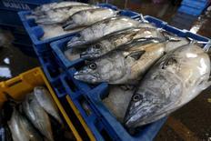 Pescado a la venta en el mercado de Villa María del Triunfo a las afueras de Lima, mar 30, 2015. La economía de Perú habría crecido un 4,5 por ciento interanual en enero, la tasa más alta en cinco meses, apoyada por el avance de los claves sectores primarios de minería y pesca, mostró el lunes un sondeo de Reuters.  REUTERS/Mariana Bazo