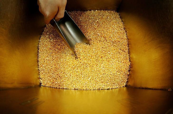 FILE PHOTO: An employee takes granules of 99.99 percent pure gold before packing them at the Krastsvetmet non-ferrous metals plant in Krasnoyarsk, Russia, October 24, 2016.  REUTERS/Ilya Naymushin/File Photo