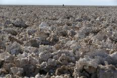 Imagen de archivo del Salar de Atacama en el norte de Chile, ene 12, 2013. La estadounidense Albemarle Corp puso en marcha una nueva planta en el norte de Chile para producir carbonato de litio, un insumo clave para el mercado de almacenamiento de energía y el desarrollo de baterías para vehículos eléctricos.  REUTERS/Ivan Alvarado