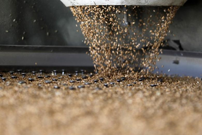 Wheat grains are seen in a sorting machine at a silo in Fundulea, 35 km (22 miles) east of Bucharest July 15, 2013. REUTERS/Bogdan Cristel