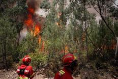 Bombeiros tentam conter fogo em Carvalho   19/6/2017     REUTERS/Rafael Marchante