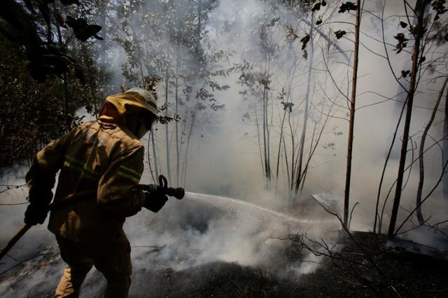A firefighter works to put out a forest fire near Castanheira de Pera, Portugal, June 20, 2017. REUTERS/Miguel Vidal