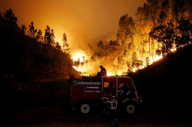 Firefighters work to put out a forest fire near Bouca. REUTERS/Rafael Marchante