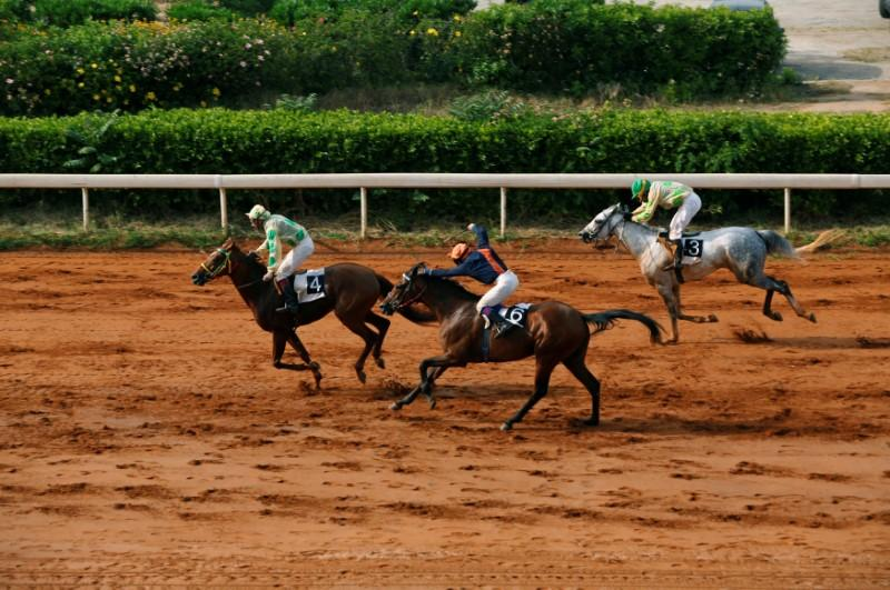Jockeys Compete During A Horse Race At Beirut Hippodrome Lebanon April 30 2017 REUTERS Jamal Saidi