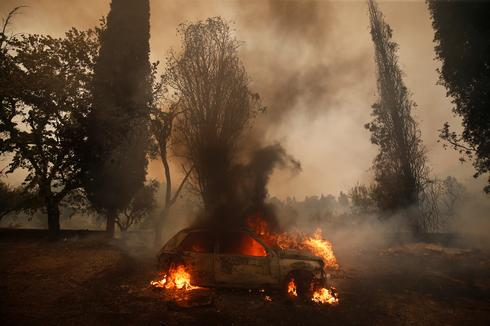 Deadly wildfires in southern Europe