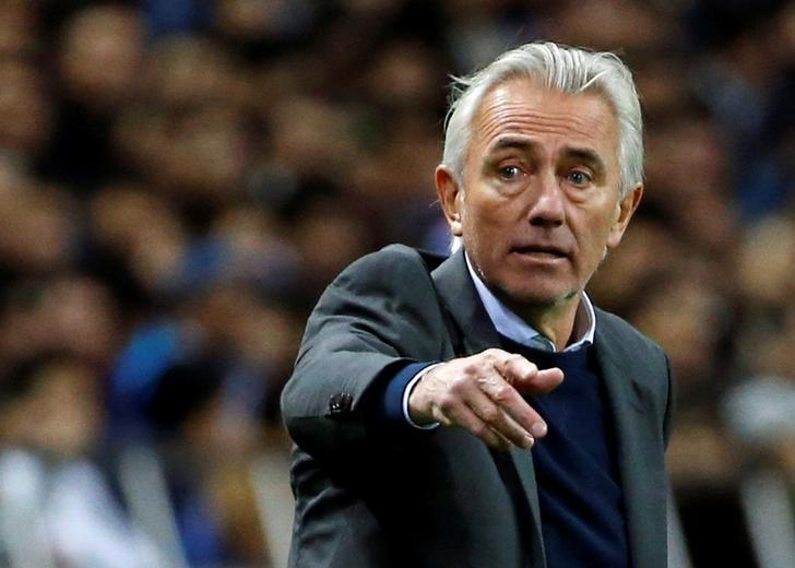 Soccer: Oranje obsession returns as van Marwijk takes Socceroos job
