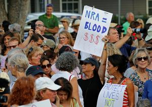 Gun debate rages after Florida mass shooting