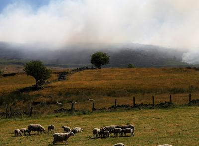Moorland fire near Manchester