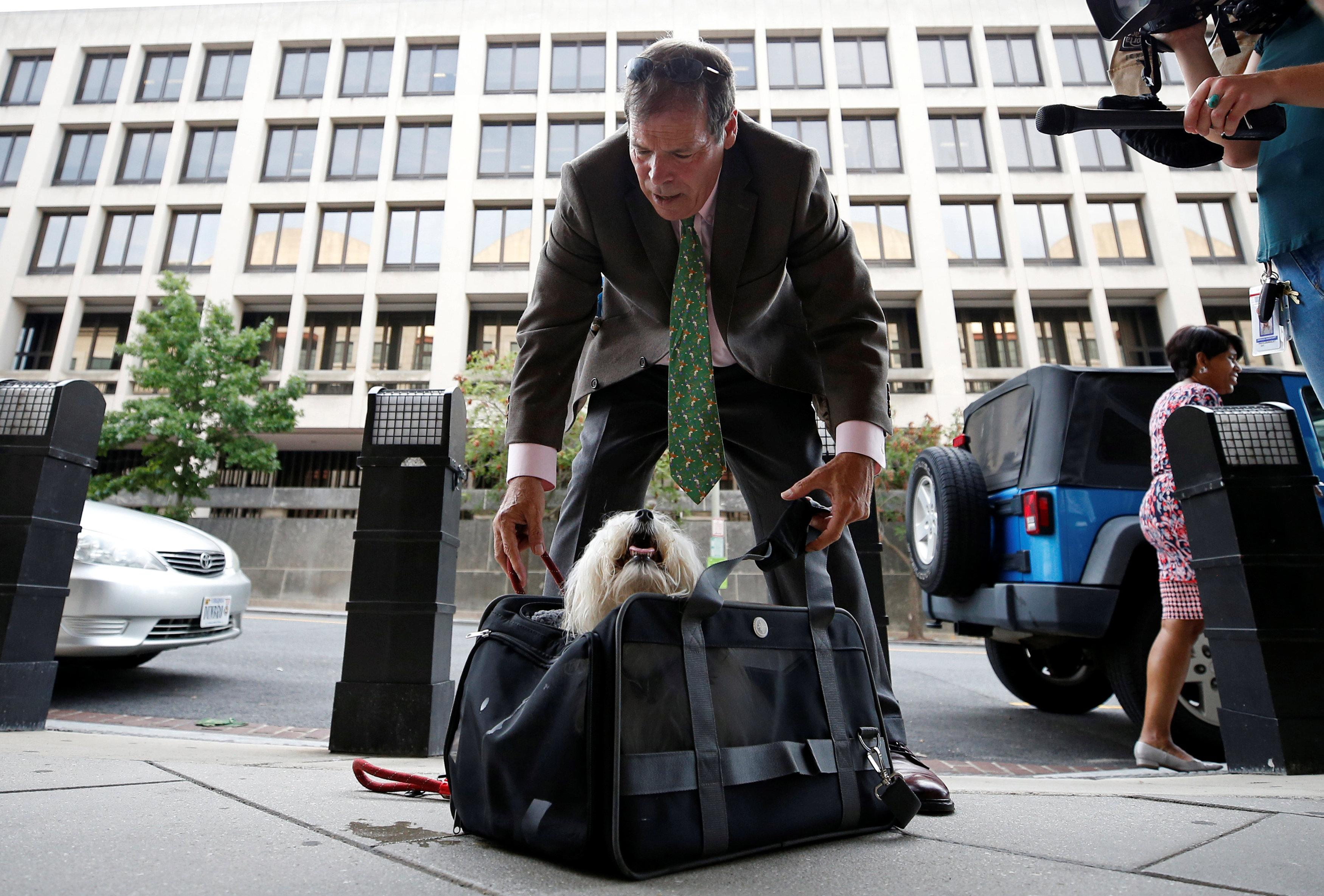 Randy Credico, an associate of former Trump campaign adviser Roger Stone, secures his dog Bianca as he arrives to testify before the grand jury convened by Special Counsel Robert Mueller at U.S. District Court in Washington, U.S., September 7, 2018. Chris Wattie