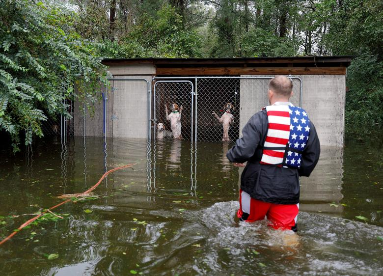 Panicked dogs that were left caged by an owner who fled rising flood waters in the aftermath of Hurricane Florence, are rescued by volunteer rescuer Ryan Nichols of Longview, Texas, in Leland, North Carolina.  REUTERS/Jonathan Drake
