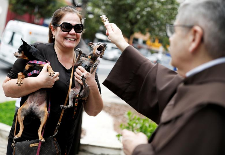 A woman holds her dogs as a priest blesses them outside Sao Francisco de Assis (Saint Francis of Assisi) Church in Sao Paulo, Brazil. Pet owners bring their animals to be blessed every year on the day of Sao Francisco de Assis, Brazil's patron saint of animals. REUTERS/Nacho Doce