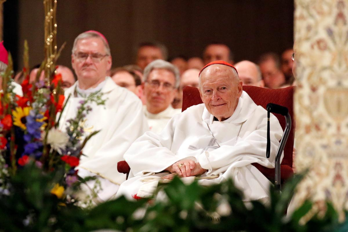 Exclusive: McCarrick defrocking shows 'bishops not above the law' – top Vatican investigator