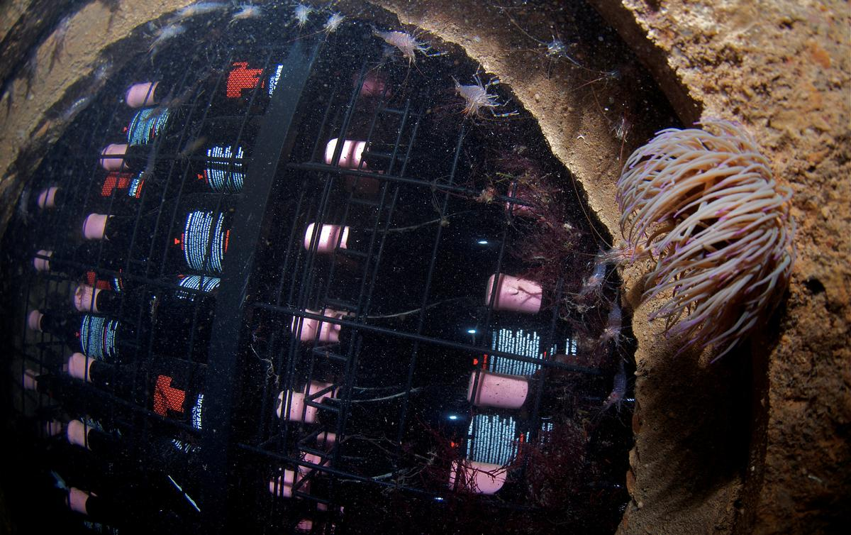 When the winemaker wore a wet suit: Spain's $100 subsea tipple