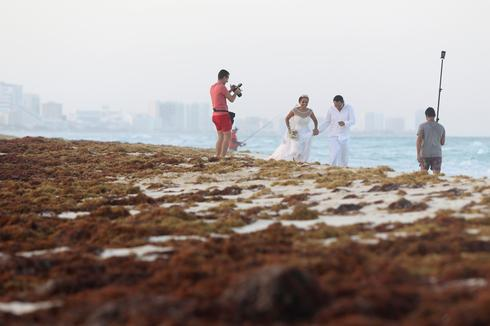 Seaweed washes up on Mexico's Cancun beaches