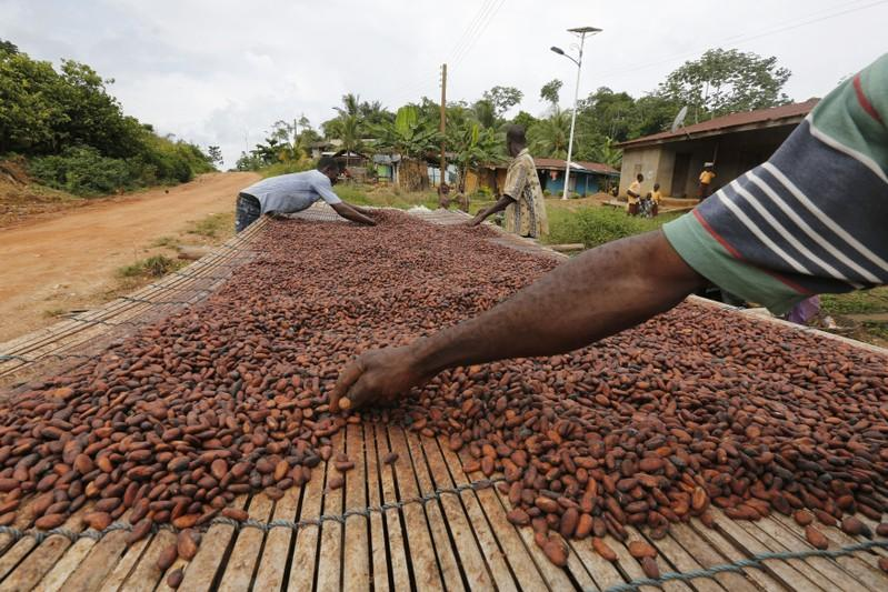 <b>Industry doubts remain over Ivory Coast, Ghana cocoa floor price</b>