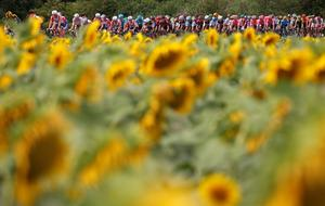 Best of Tour de France