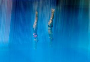 Best of World Swimming Championships
