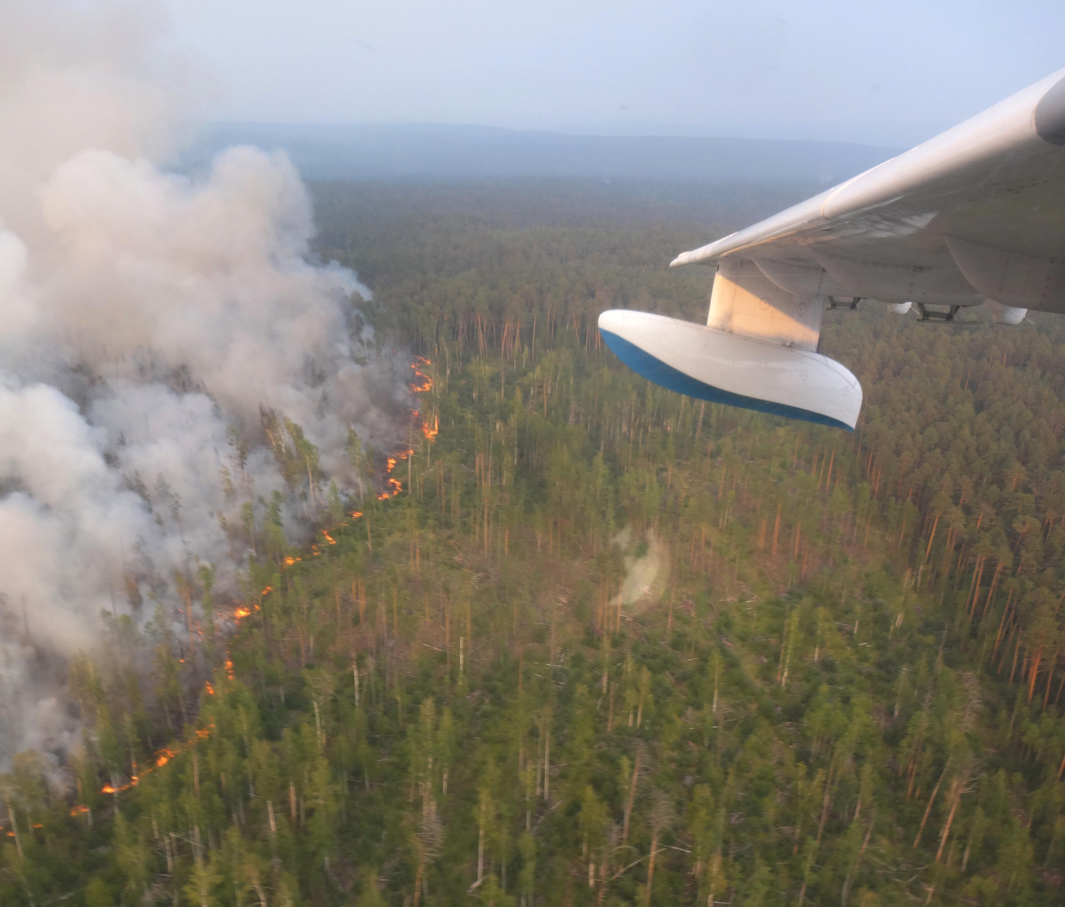 Trump offers Putin help with Siberian wildfires: Kremlin
