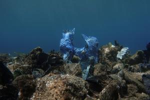 Our ocean of plastic