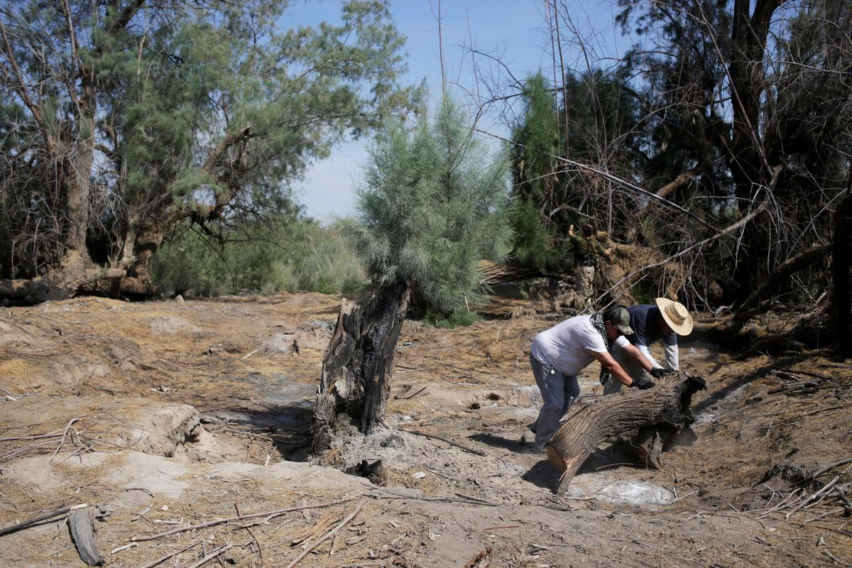 Mexikaanse gesinne strooi droë vlaktes uit vir grafte van verdwyn