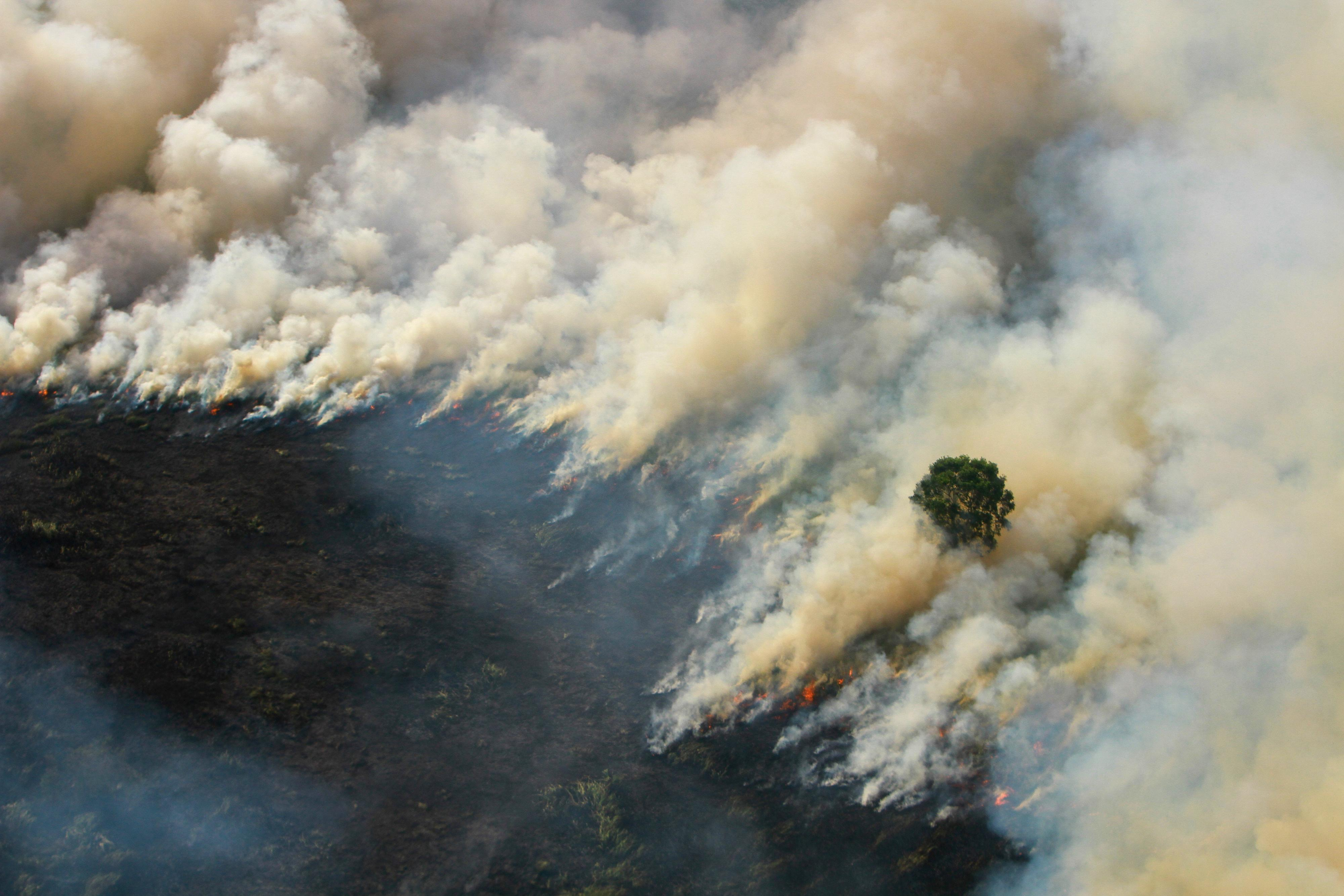 Malaysia complains of smog from Indonesia as forest fires flare