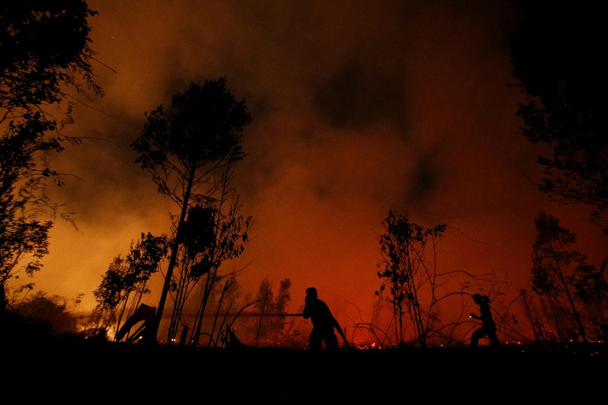 Wide Image: Indonesia's ragtag firefighters on frontline of Borneo's forest blazes