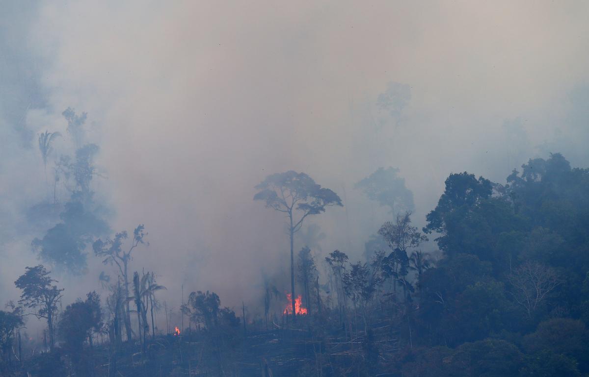 Amazon-brande lei daartoe by dat probleme met asemhaling by kinders in Brasilië voorkom: studie