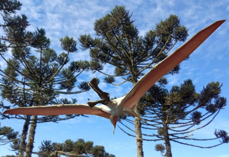 Visjag 'yster draak' het in Australië gestyg in die era van dinosourusse