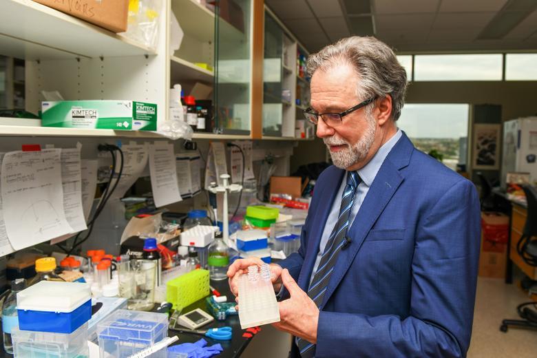 """El trabajo de los científicos estableció la base para comprender cómo las células perciben los niveles de oxígeno, un descubrimiento que está siendo explorado por investigadores médicos que buscan desarrollar tratamientos para diversas enfermedades que funcionan activando o bloqueando la maquinaria de detección de oxígeno del cuerpo.  Su trabajo se centra en la respuesta hipóxica, la forma en que el cuerpo reacciona al flujo de oxígeno, y """"reveló los elegantes mecanismos por los cuales nuestras células perciben los niveles de oxígeno y responden"""", dijo Andrew Murray, un experto de la Universidad de Cambridge de Gran Bretaña que felicitó a los tres. .  Foto: ganador del Premio Nobel de Medicina Gregg Semenza de la Facultad de Medicina de la Universidad Johns Hopkins en su laboratorio en Baltimore, Maryland.  REUTERS / Theresa Keil"""