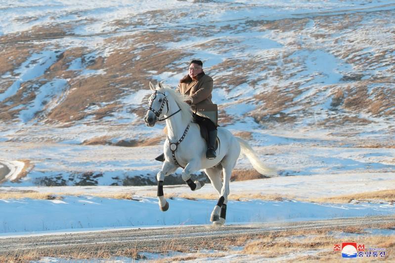 Nordkoreas Kim auf dem weißen Pferd - Spekulationen um Fotos