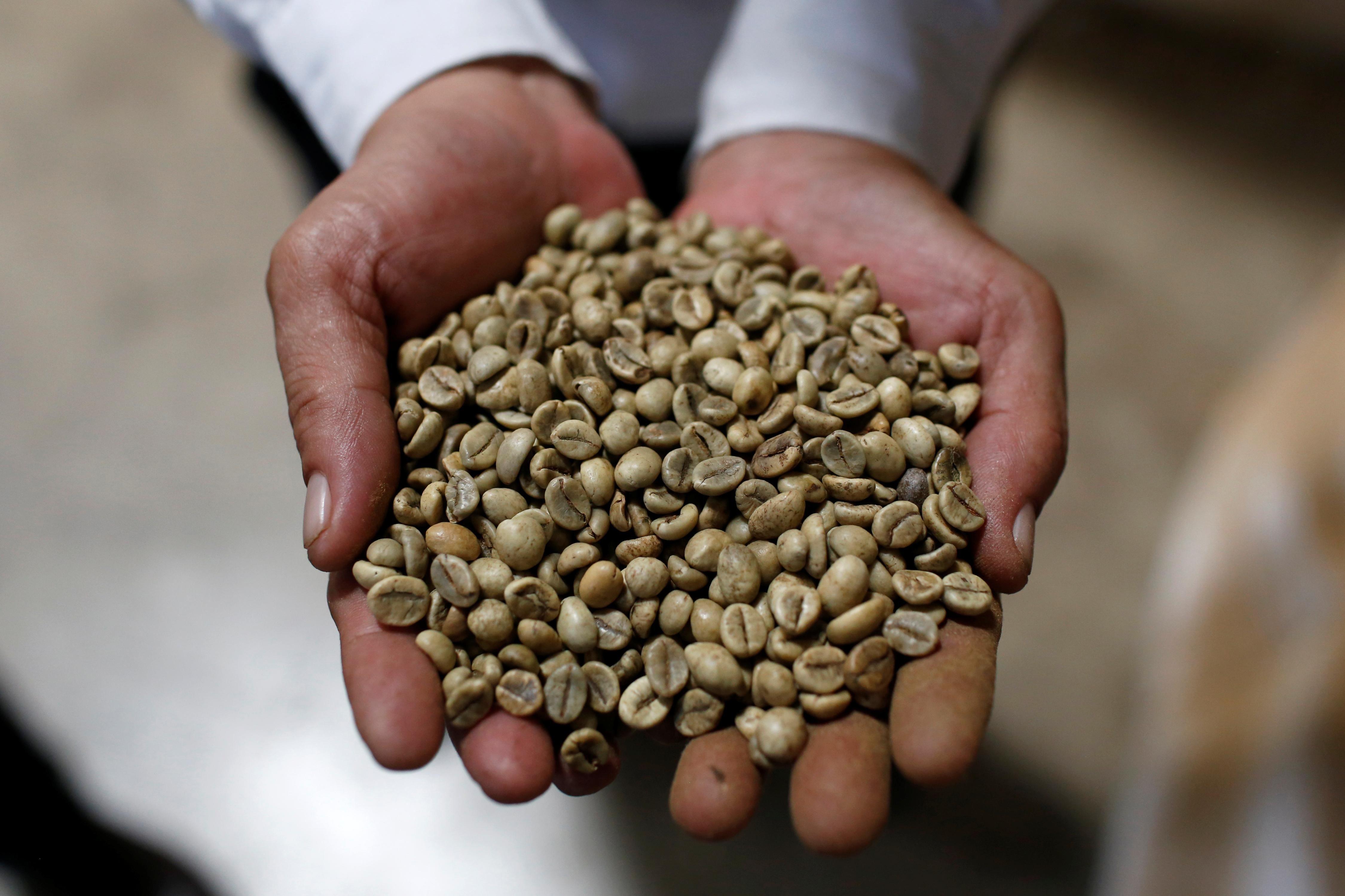 Vietnam domestic coffee prices hit four-month lows; trading thin in...