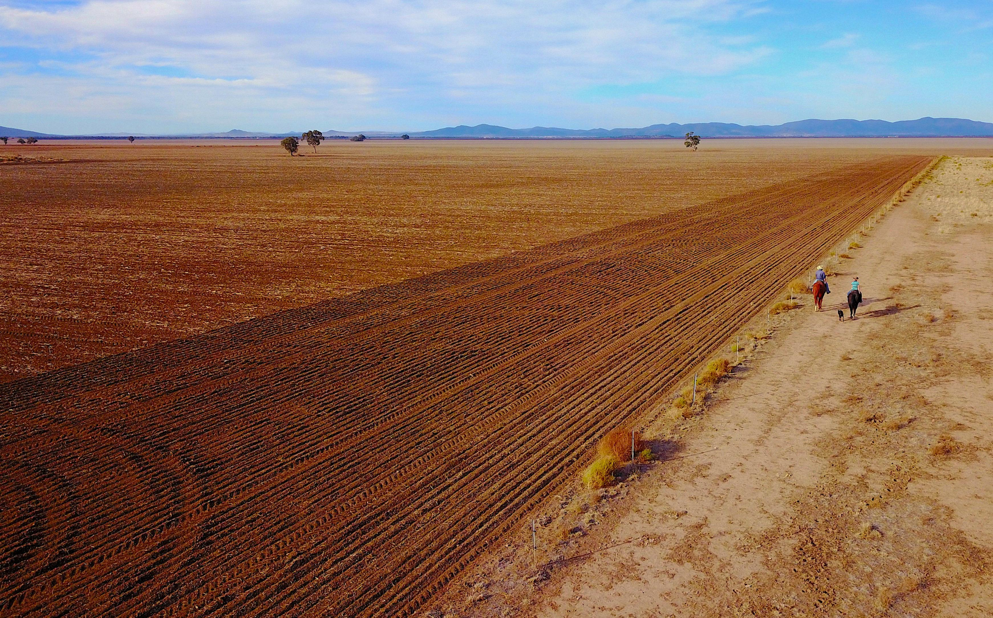 Column: Drought vaporizes Australia's share of global wheat exports