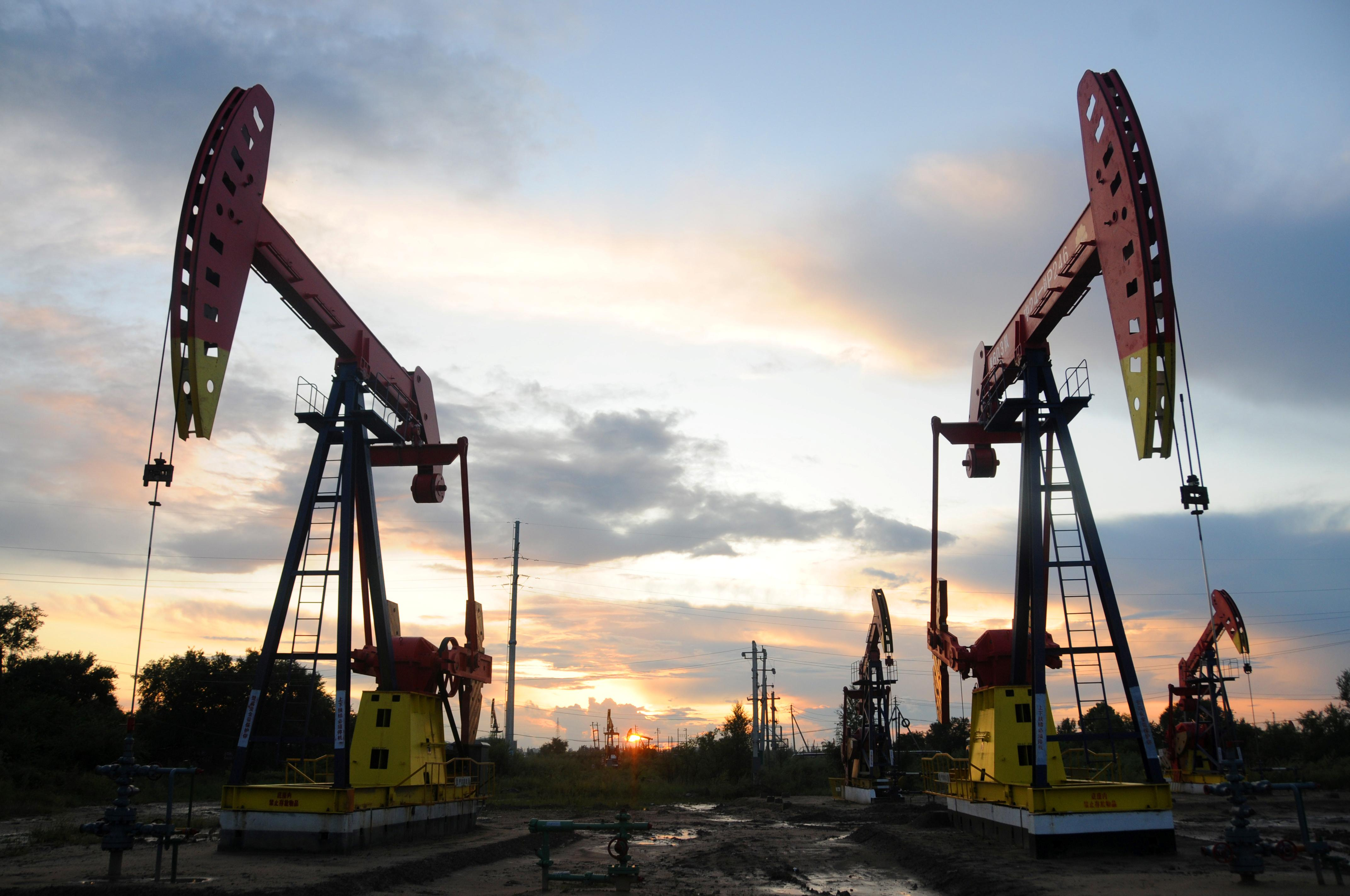 Oil steady in face of contradictory signals