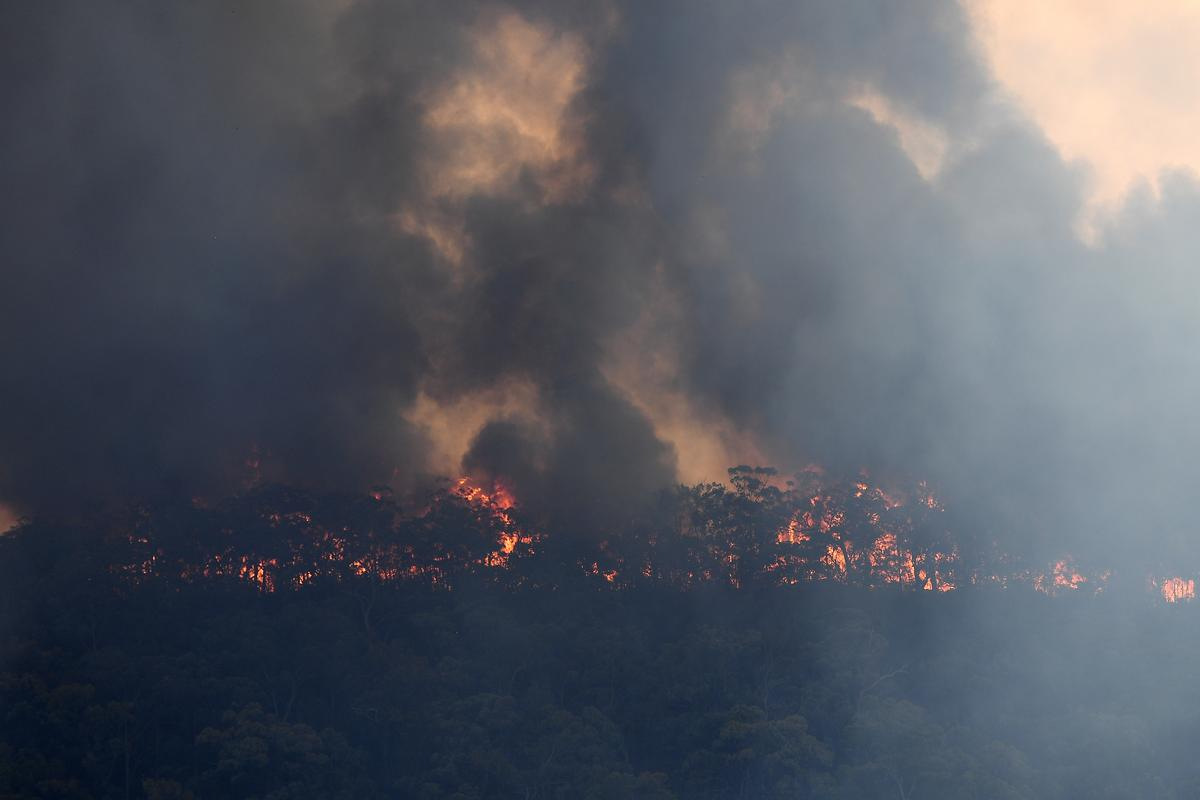 Lack of forecast rains to prolong Australian bushfires threat