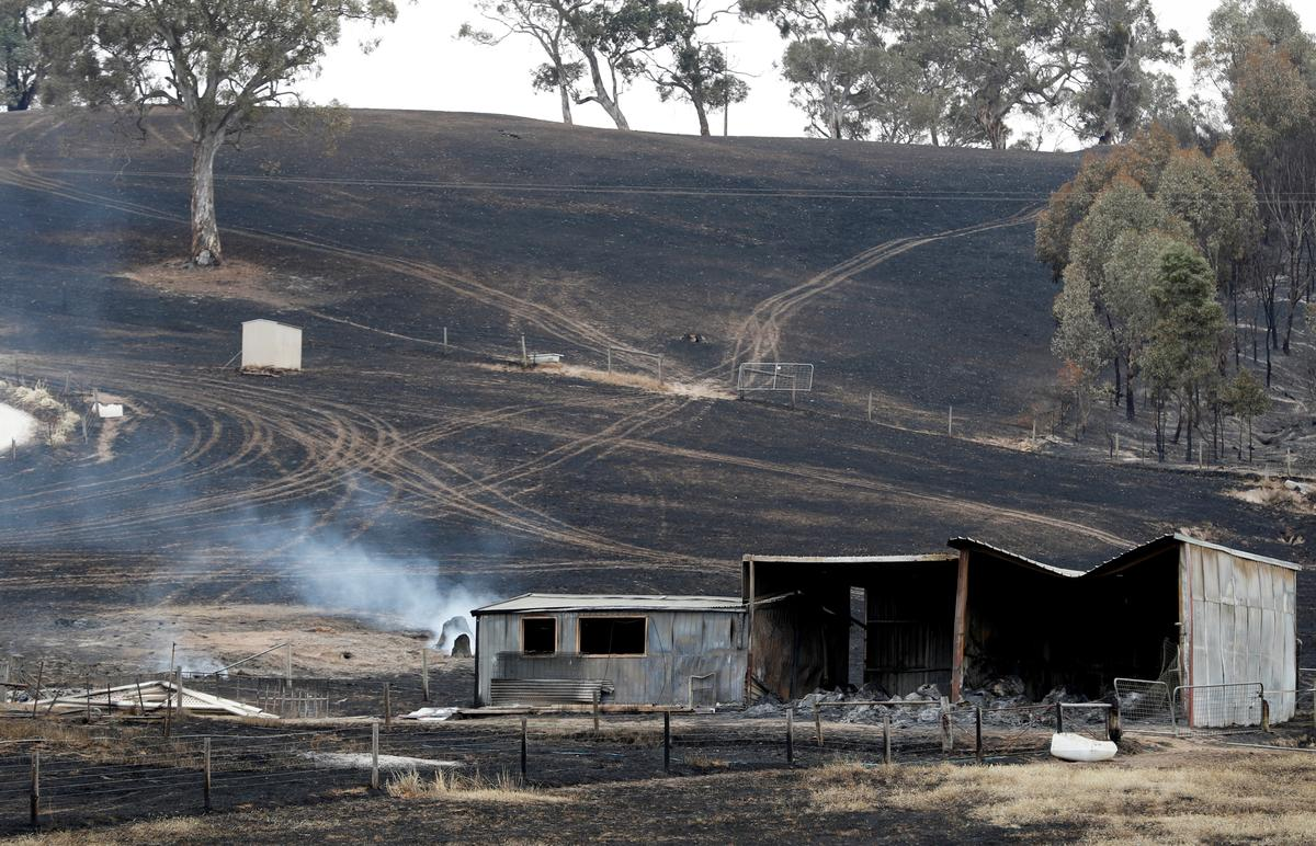Australian firefighters access badly burned towns; PM defends climate policies