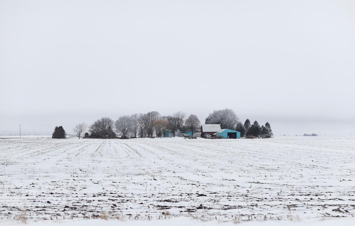U.S. farm bankruptcies hit an eight-year high: court data