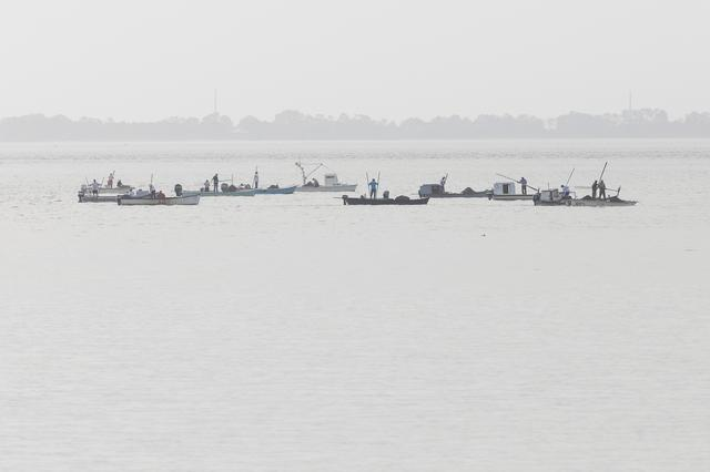Oysters Boats are clustered together as they harvest oysters in Apalachicola Bay off Eastpoint, Florida, U.S. February 11, 2020.  REUTERS/Colin Hackley