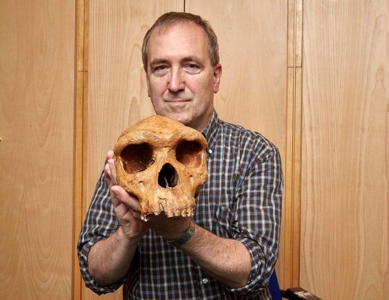 Landmark skull fossil provides surprising human evolution clues