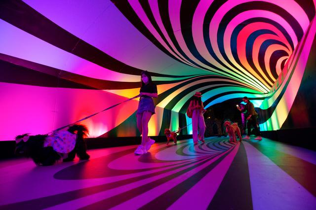 Guests with their dogs walk through an installation at the ''Sugar Rush'' experience, a candy-based theme park, in Woodland Hills, California, U.S., April 1, 2021.  REUTERS/Mario Anzuoni